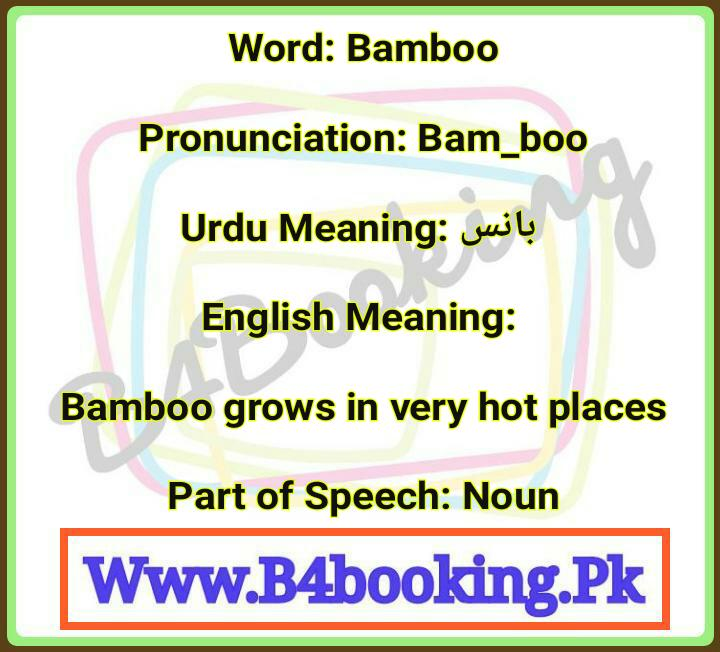 Bamboo Meaning In Urdu and English and it's Pronunciation