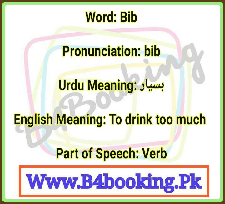Bib Meaning In Urdu and English and it's Pronunciation