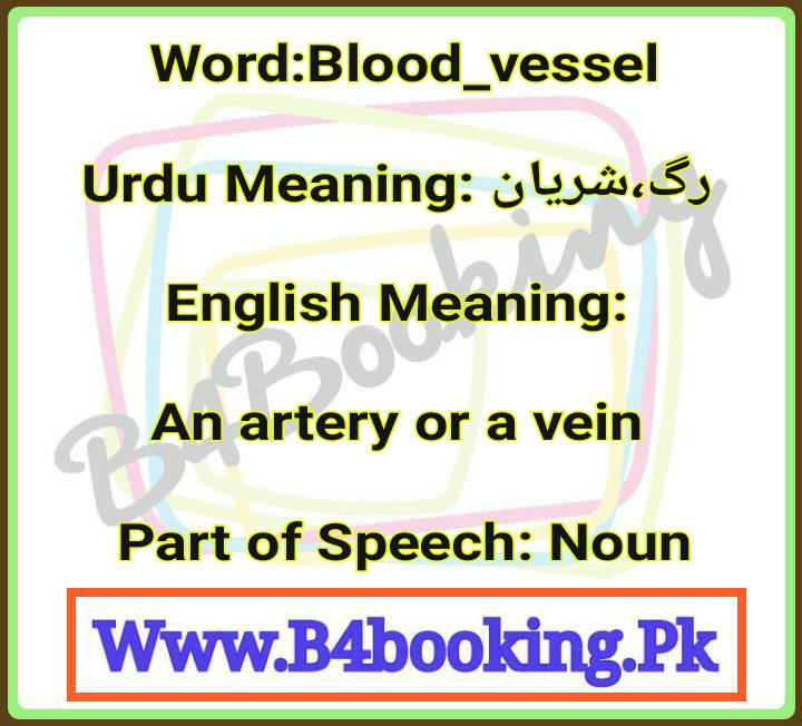 Bloodvessel Meanings In English And In Urdu Its Pronunciation